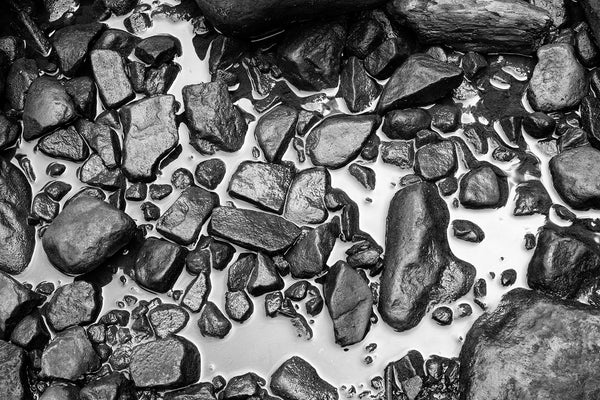 Black and white photograph of wet rocks in a shallow pool of water that's reflecting soft morning light.