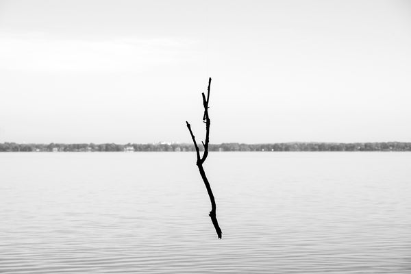Black and white photograph of a fallen branch seemingly floating in mid-air with an empty lake in the background. Upon closer inspection, we can see that the branch is suspended on a strand of fishing line.