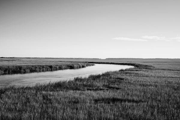 Black and white photograph of the southern coastal marsh landscape near Savannah Georgia