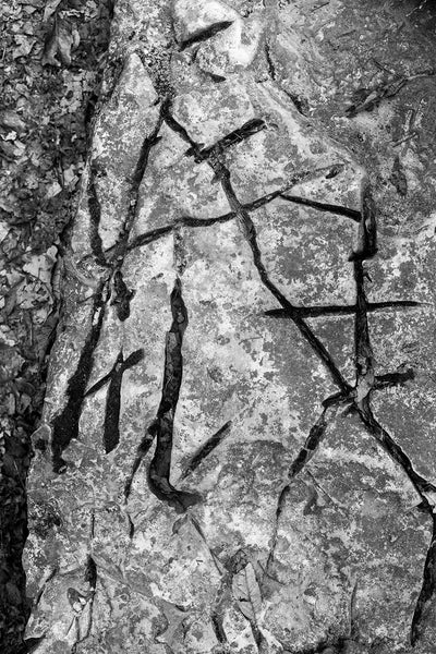 Black and white detail photograph of strange markings resembling calligraphy on a large piece of bedrock in the forest.