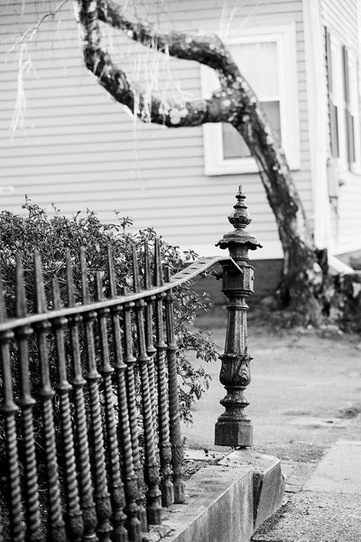 Black and white photograph of an old Victorian-era iron fence that's been bent and broken over the years. Seen on a residential street in a New England town.
