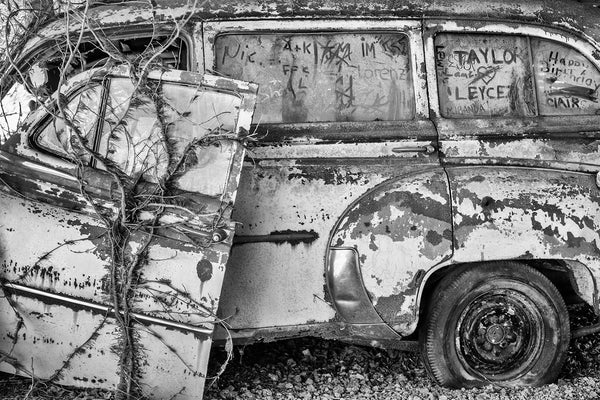 Black and white photograph of a rusty antique car covered with poison ivy and graffiti scribbled into the dust on the windows.