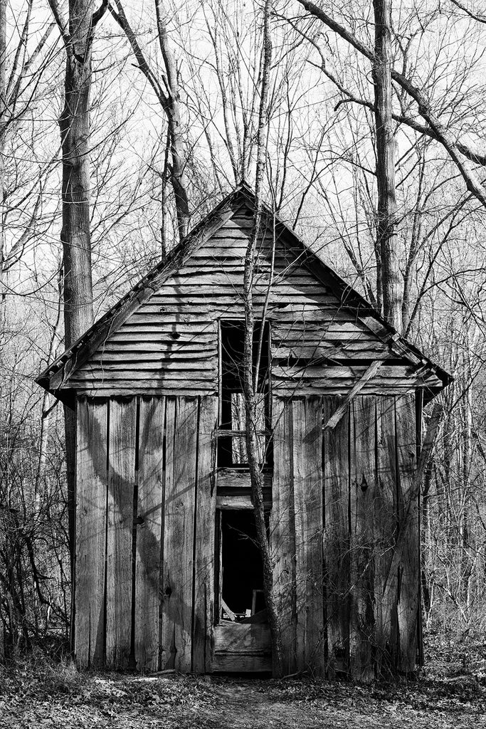 Black and white photograph of an old wooden house long ago abandoned in the forest photographed in the soft light of late winter