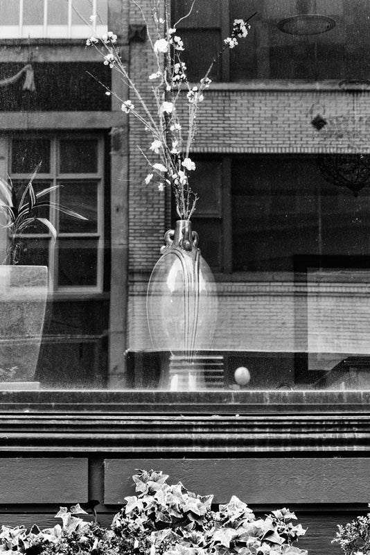 Black and white photograph of a vase with flowers in a downtown store window in Memphis, Tennessee.