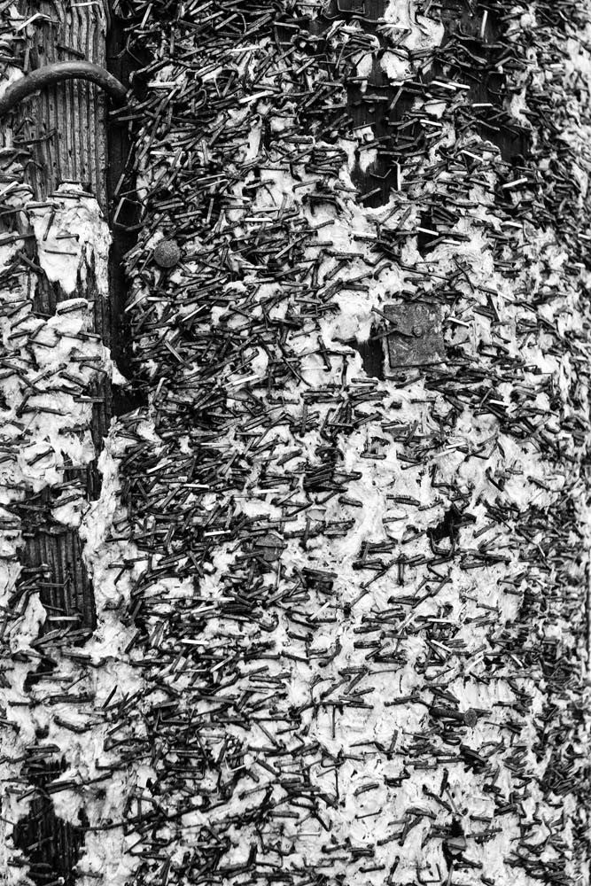 Black and white abstract photograph of a telephone pole covered in staples and fragments of old club posters on Frenchman Street in New Orleans.