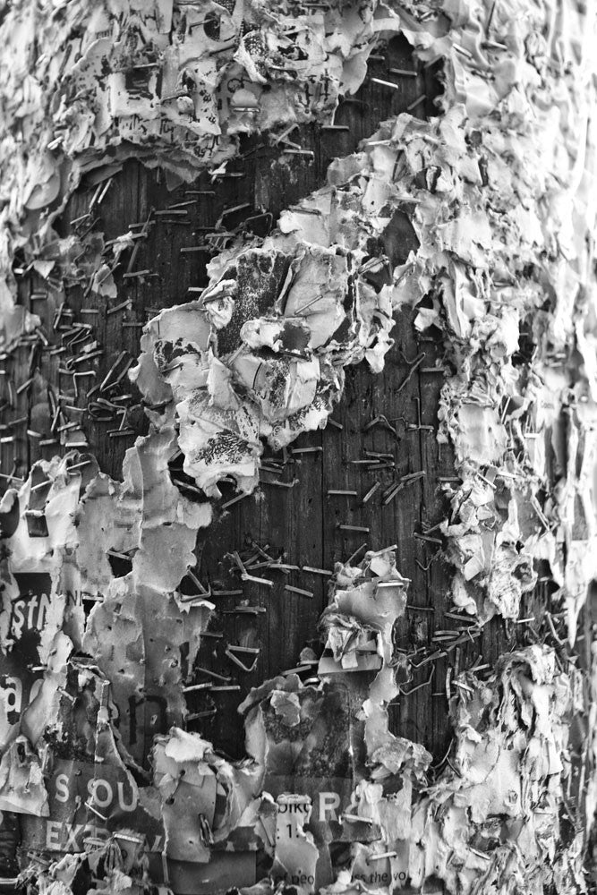 Black and white abstract photograph of a telephone pole covered in staples and fragments of old club and band posters on Frenchman Street in New Orleans.