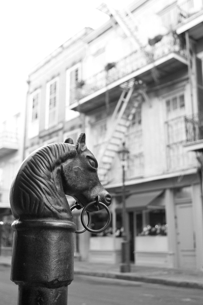 Black and white photograph of a black metal horse head post in the French Quarter of New Orleans.
