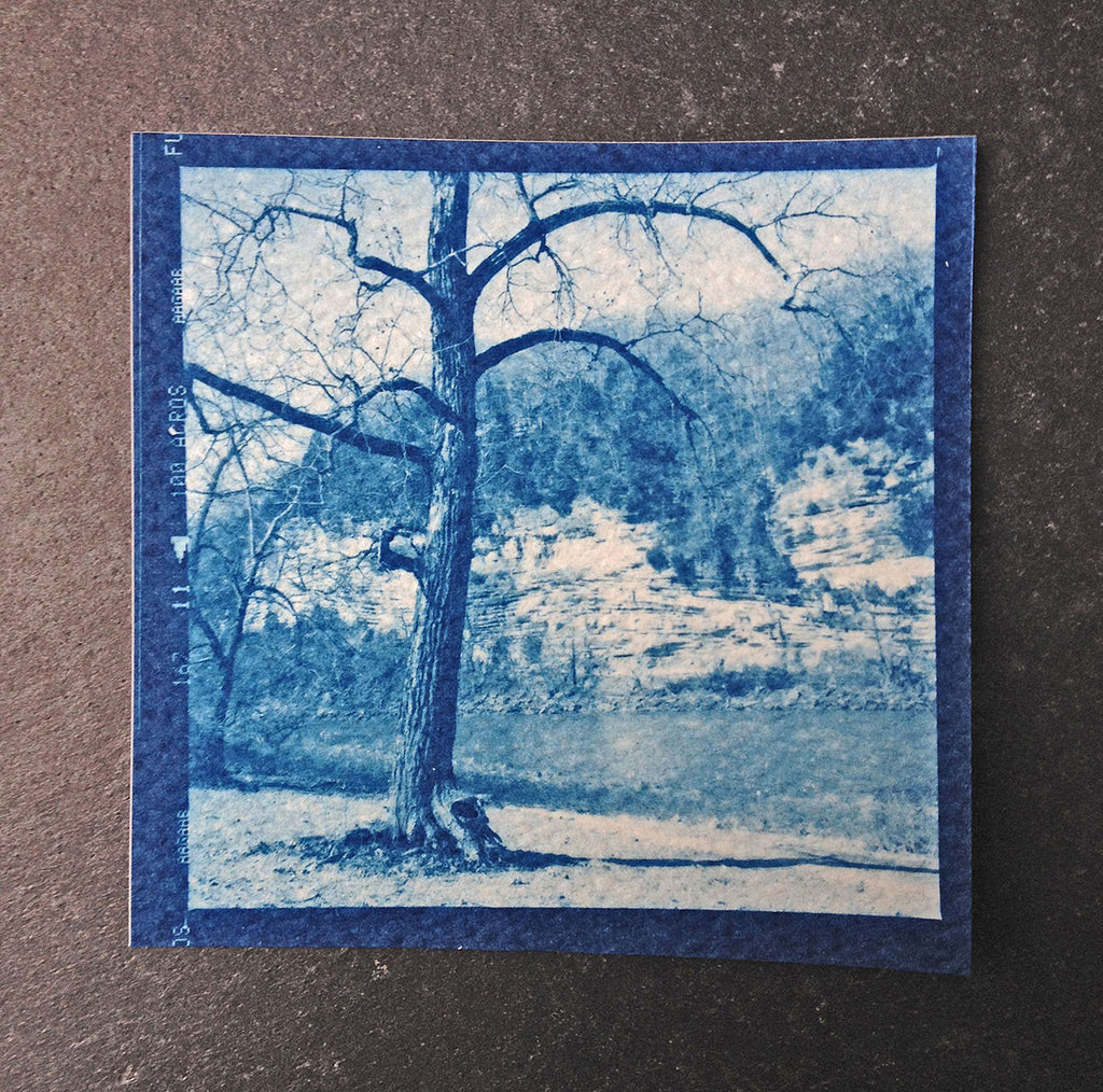 This is a unique one-of-a-kind handmade cyanotype print of a beautiful big tree standing by a riverbed, with cliff faces in the background. This was contact printed from a 2-1/4 inch black and white film negative on textured ivory watercolor paper, handmade and printed by the artist.