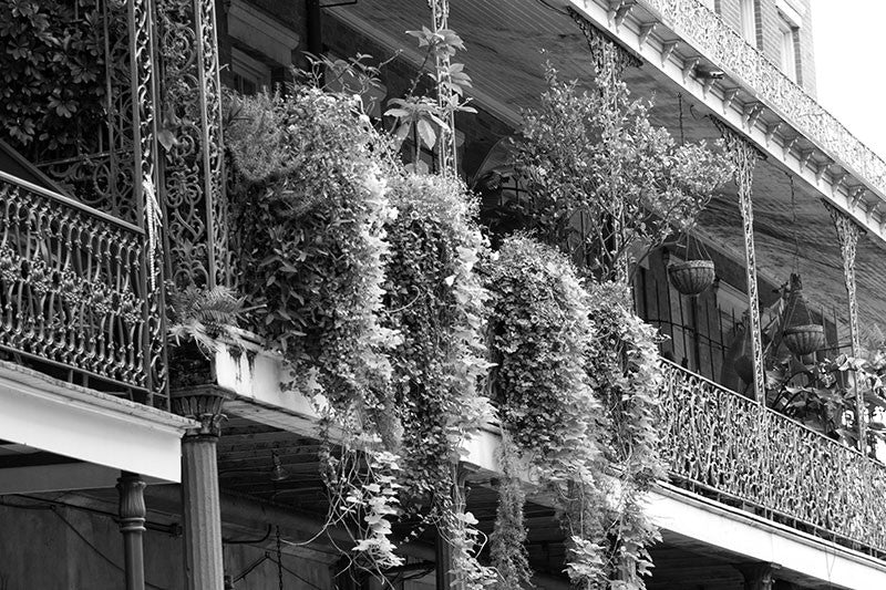 Black and white photograph of beautiful ironwork balconies, the landmark architectural element in the New Orleans French Quarter.