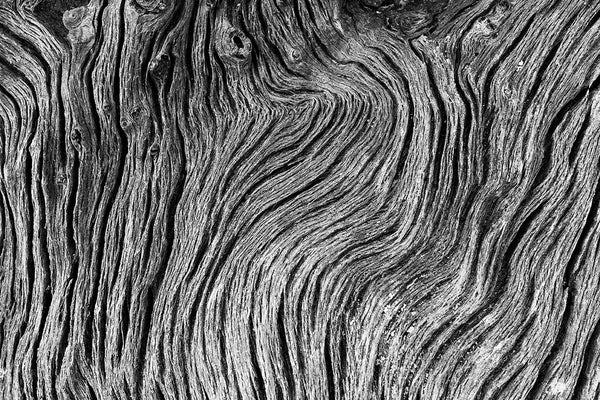 Black and white close-up photograph of the intricate wavy woodgrain patterns in a piece of driftwood found on a beach.