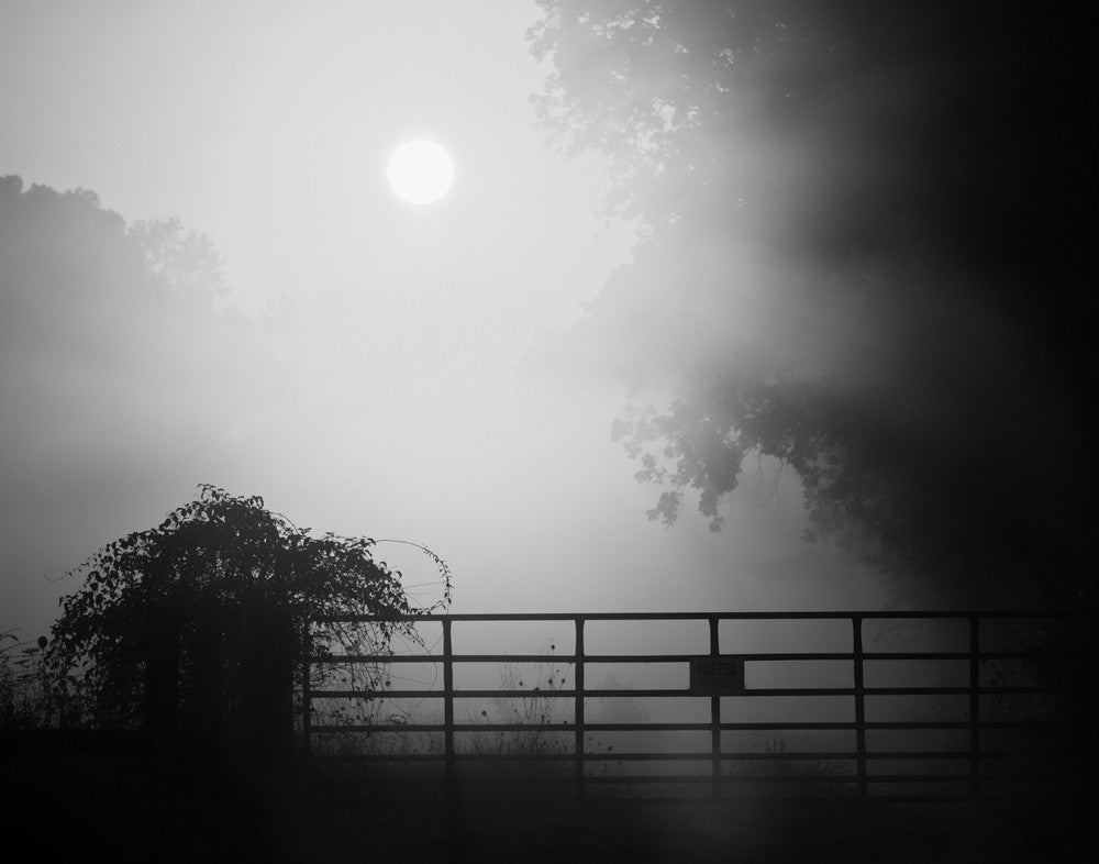 Black and white landscape photograph of the sun rising through the dense morning fog.