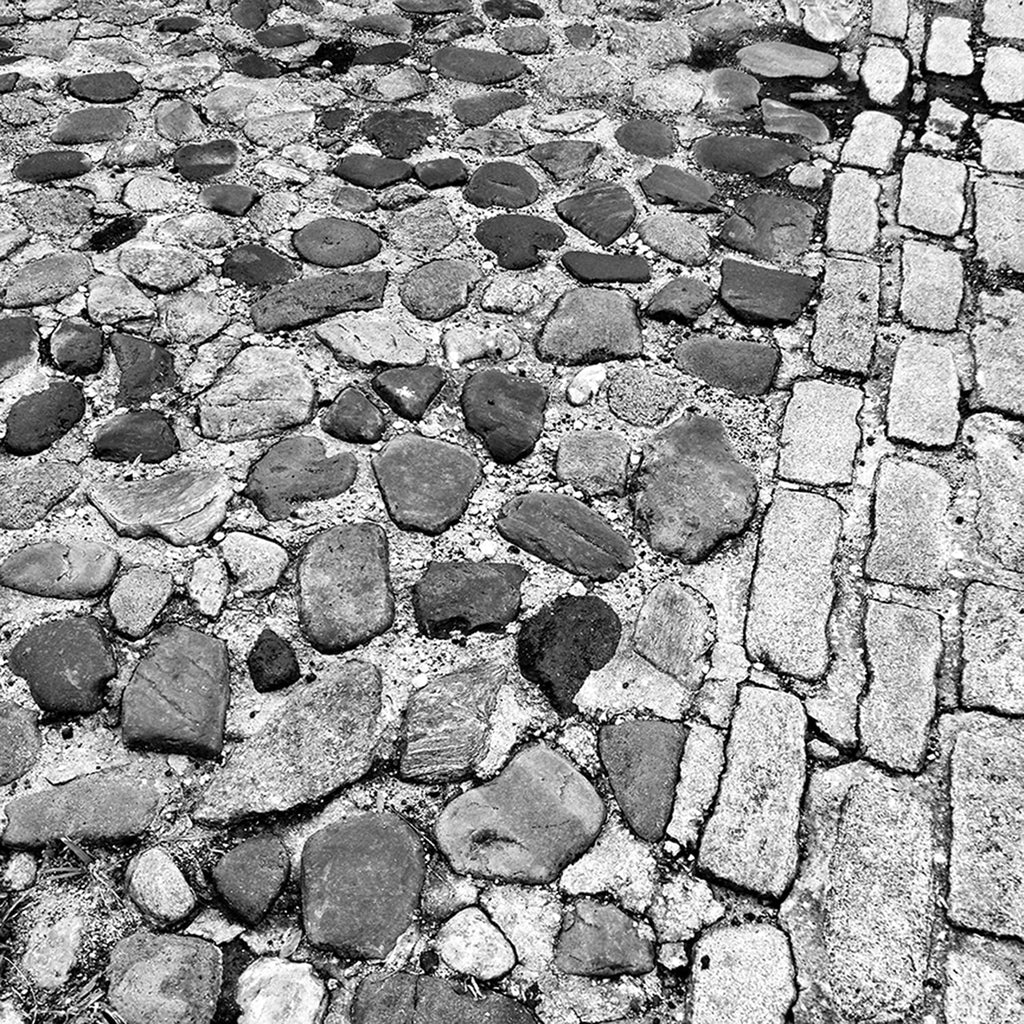 Charleston Cobblestone Street Black and White Photograph (Square Format) (IMG_7931)