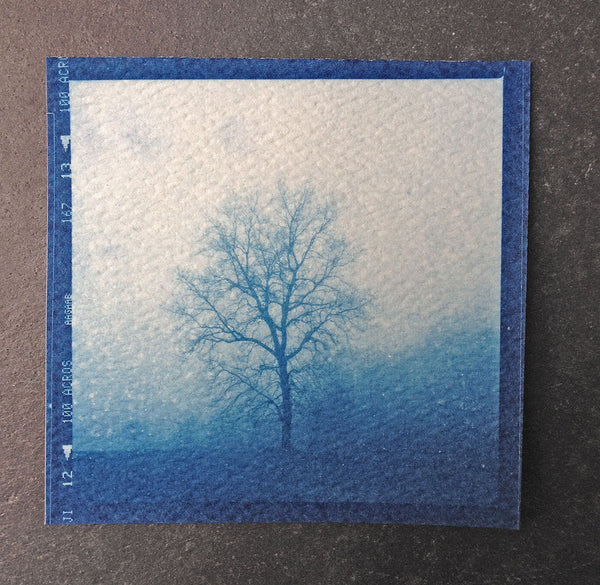 This is a unique, small, one-of-a-kind handmade cyanotype print of a barren tree in a winter fog on a hillside. This was contact printed from a 2-1/4 inch black and white film negative on textured ivory watercolor paper, handmade and printed by the artist.