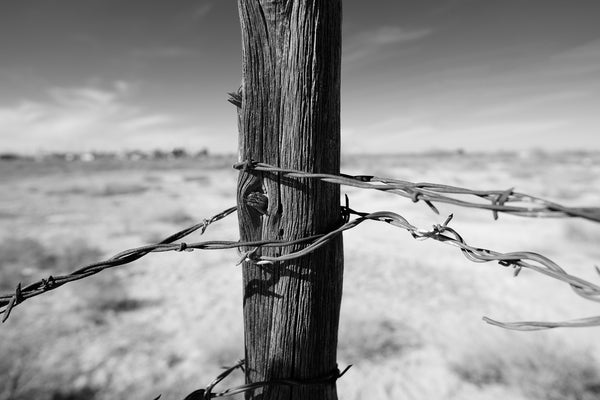 Black and white close-up photograph of a weathered fencepost in the desert wrapped with twisted strands of rusty barbed wire.