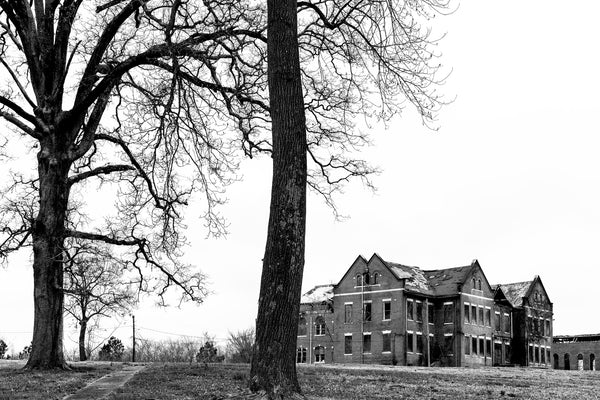 Black and white photograph of beautiful, barren winter trees on the campus of a former college which is now just abandoned and decaying buildings.
