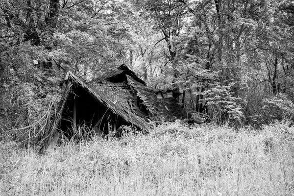 Black and white photograph of a partially collapsed house that once had a post office in the front and living quarters for the postmaster in the back. This is one of a small collection of abandoned ruins in the small Mississippi Delta community of Hushpuckena.