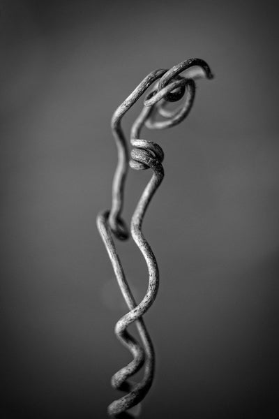 Black and white fine art macro photograph of a tiny twisted and knotted vine shot to resemble a large natural sculpture.