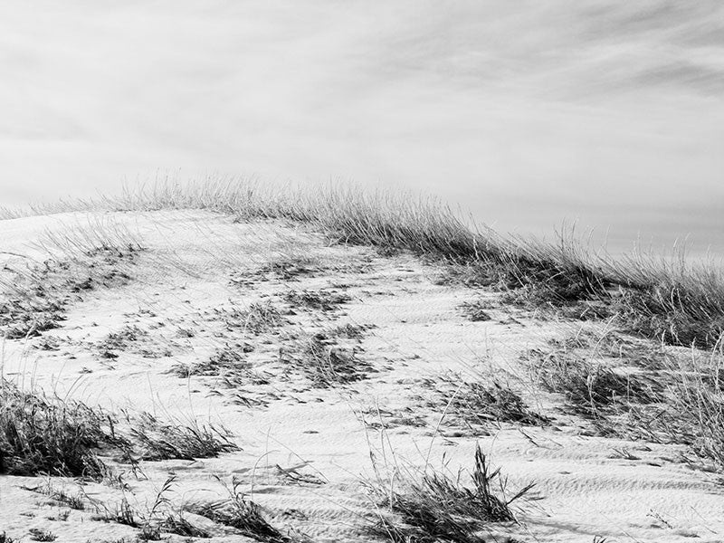 Black and white landscape photograph of South Dakota's Buffalo Grassland with a light dusting of snow.