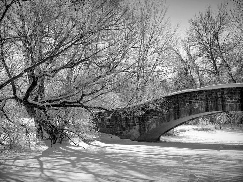 Black and white photograph of a beautiful old stone bridge from the 1920s, spanning a frozen pond in Madison, Wisconsin. Soft long shadows from trees reach out across the ice and snow.
