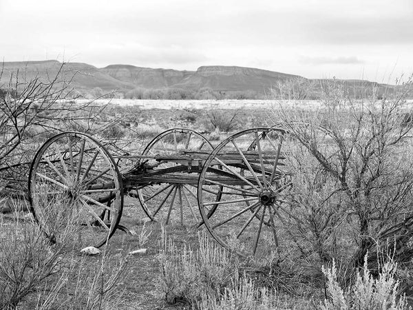Black and white photograph of a weathered old wagon, abandoned in the beautiful Wyoming landscape, with the foothills of the Rocky Mountains in the background.