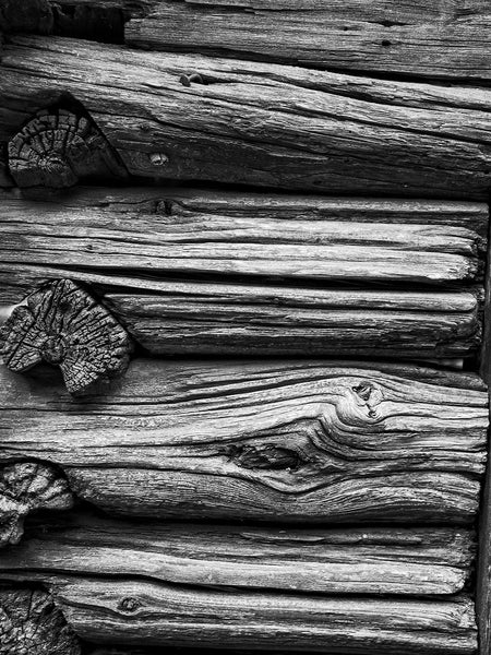 Black and white photograph of beautifully textured logs with deep woodgrain that have been built into a rustic fence.