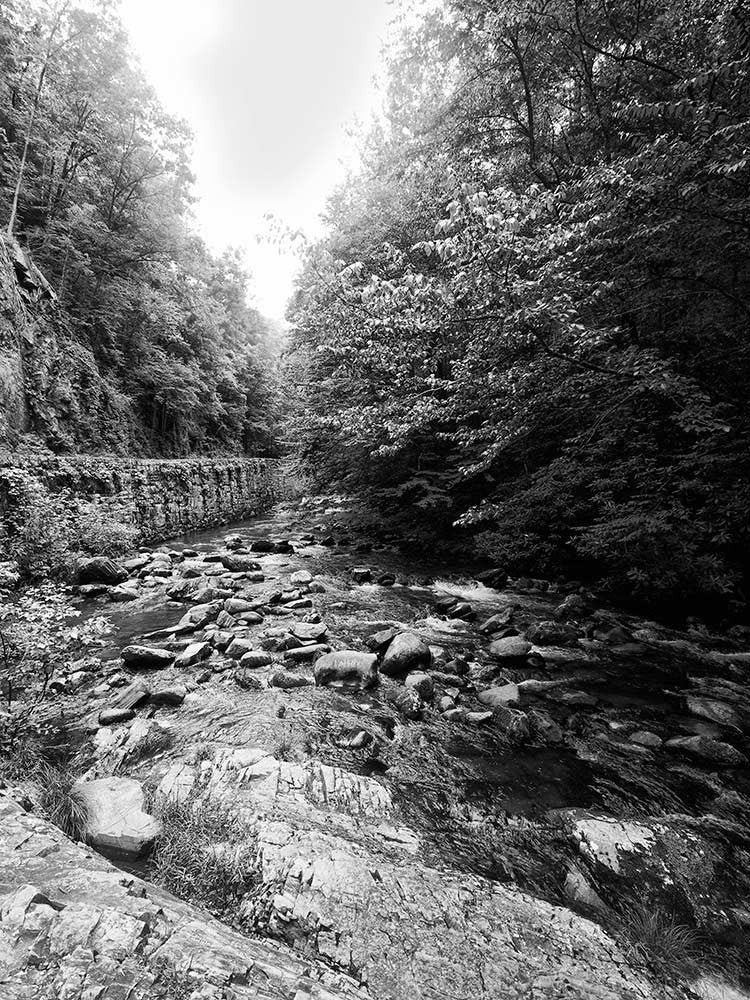 Black and white landscape photograph of a rushing stream flowing through a rocky river bed in the Great Smoky Mountains National Park in Tennessee.
