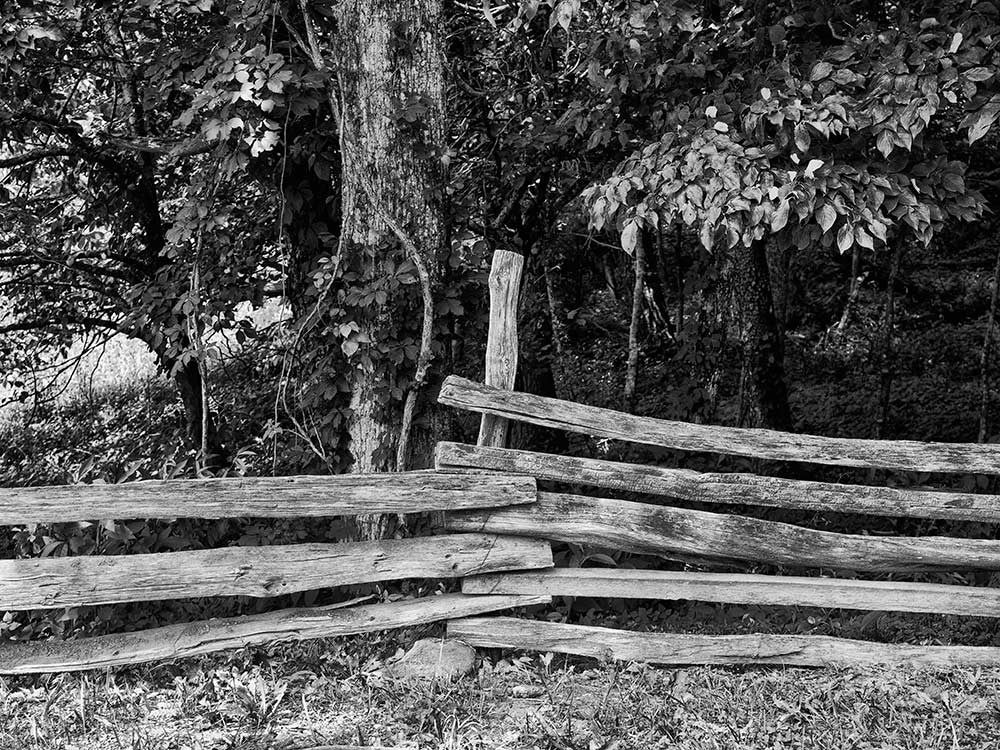 Black and white landscape photograph of a split rail fence in the green landscape of Cades Cove in the Great Smoky Mountains National Park.