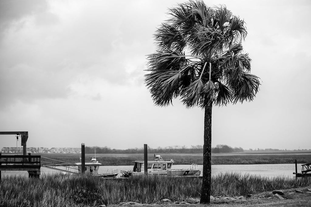 Black and white photograph of the Atlantic coast on the outskirts of Charleston on a rainy day.
