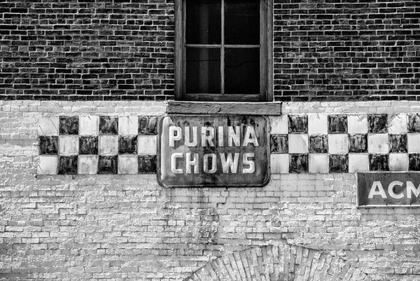 Black and white photograph of a vintage Purina Chows sign on the old abandoned Acme Feed and Seed building (before renovation) on Broadway in Nashville.