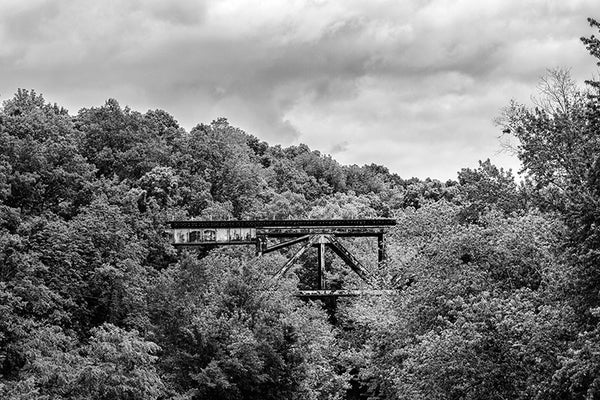 Black and white photograph of a railroad bridge running through the forested hills near Adams, Tennessee.