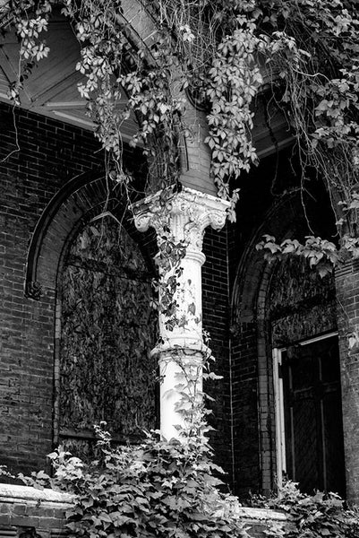 Black and white photograph of a peeling white Corinthian column surrounded by ivy. Louisville's abandoned Quinn Chapel is a historic church that's now falling into ruin but is still quite beautiful and evocative.