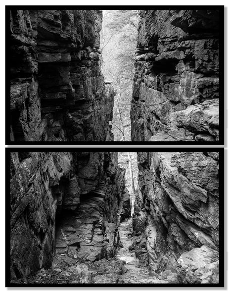 Black and white landscape photograph of a tree at the end of deep narrow gorge between two tall stone walls. Set of two large prints designed to be framed individually and displayed together in a stacked vertical arrangement.