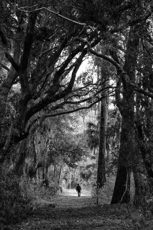 Black and white photograph of a person walking through the beautiful low country forest near Savannah.