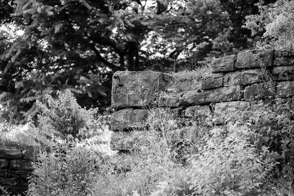 Black and white photograph of the old limestone walls of Fort Negley in the tall grass and weeds near Nashville. Fort Negley is a star-shaped structure built of limestone blocks on a hilltop south of the city, and was the largest inland fort built during the American Civil War. The fort was built by the Union army in 1862 as a defensive post after the Confederates lost control of Nashville in successive battles, but with fighting concentrated in other areas, the fort never saw action.