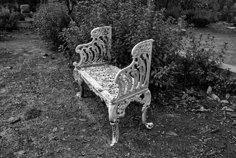 Black and white photograph of a white cast iron bench in an unkept section of Savannah's famous, beautiful, and creepy Bonaventure Cemetery.