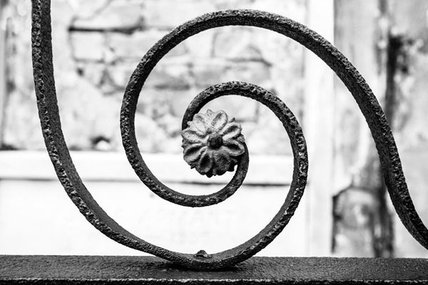 Black and white fine art photograph of a rusty, hand-wrought spiral iron fence with a flower at its center, in New Orleans, Louisiana.