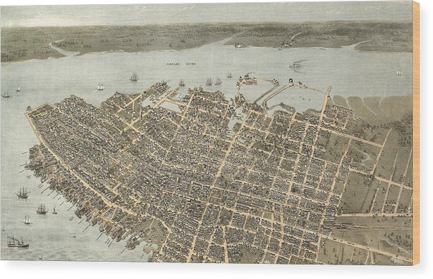 Birds Eye View Of Charleston 1872 - Wood Print