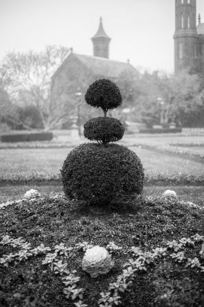 Black and white landscape photograph of a foggy morning in the gardens at the Smithsonian Institution in Washington, DC.