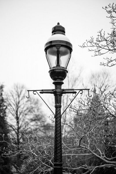 Black and white photograph of a historic lamp post on the grounds of the Smithsonian Institution in Washington, DC.