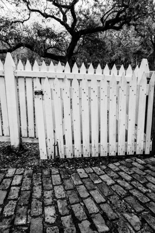Mysterious black and white landscape photograph featuring a white picket fence, a brick path, and a black winter tree.