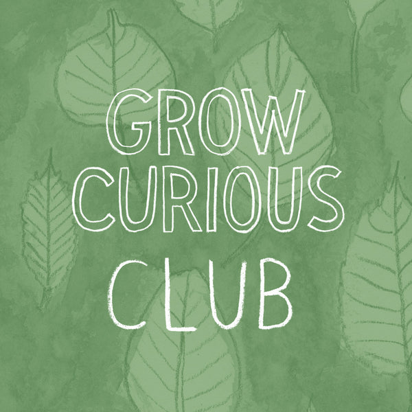 Grow Curious Club Subscription
