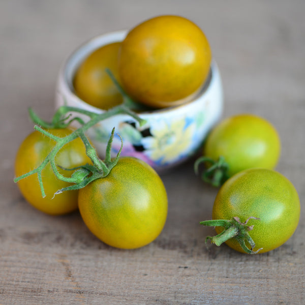 Green Grape Tomato Seeds -- Compact for Small Spaces