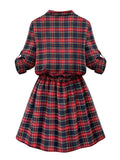 Casual Women Stand Collar Button Plaid Elastic Waist Pleated Dress
