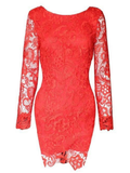 Women Sexy Lace Backless Long Sleeve O-Neck Dress