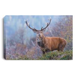 Big Buck In The Mountains Wall Art Canvas .75in Frame