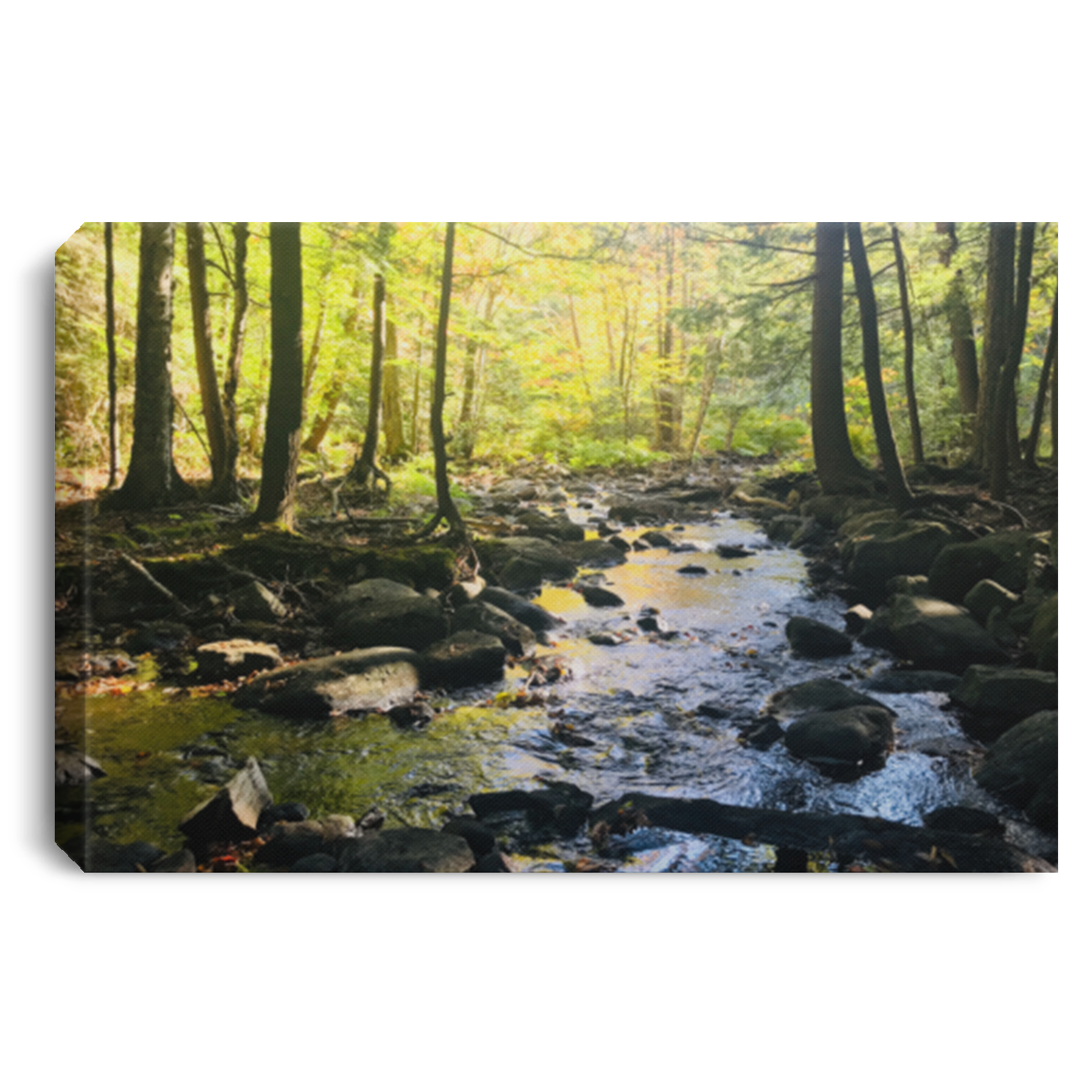 Adirondack Autumn Wall Canvas .75in Frame