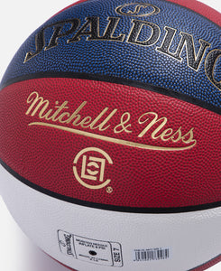 Spalding Basketball (Multi)