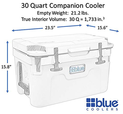 Blue Coolers Companion Cooler �30 Quart, Roto-Molded Ice Cooler | Large Ice Chest Holds Ice up to 10 Days | (30 Quart, Blue)