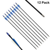 SinoArt 29 Inch Fiberglass Arrows Archery Target Practice Arrows or Youth Arrows for Recurve Bow(12 Pack)