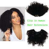 Rossy&Nancy Afro Kinky Curly Clip in Hair Extensions Brazilian Virgin Human Hair 120 Grams 7 Pieces Double Wefts With 16 Clips for African American Black Women